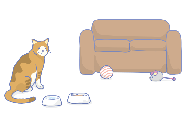 CatTraining2.png